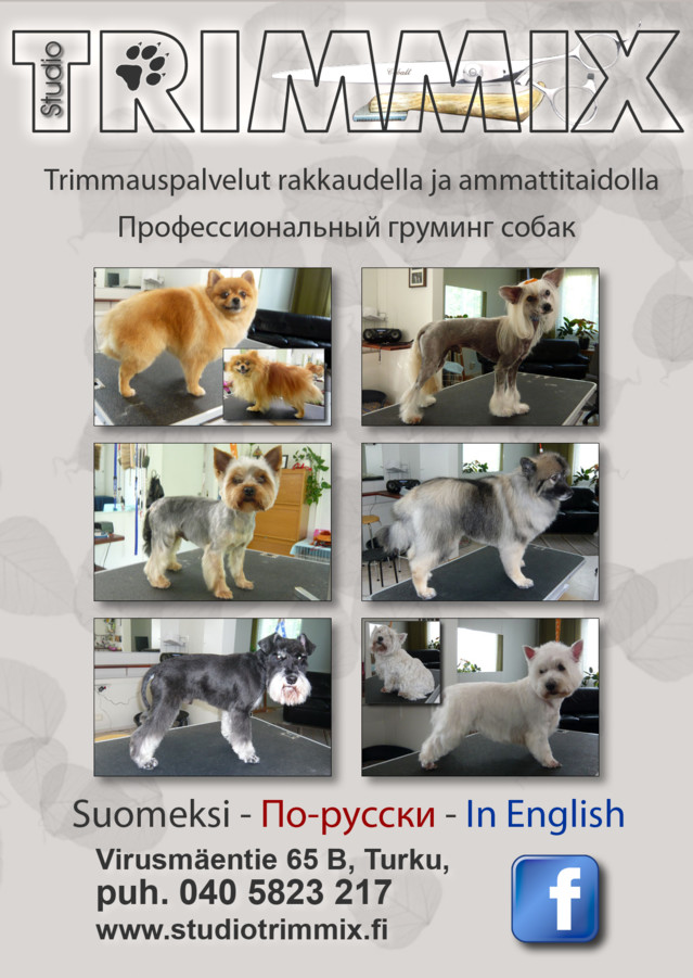 IlmoitusA4_rus-normal.jpg