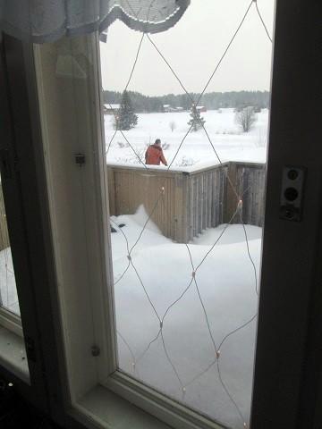 lumi01-normal.jpg