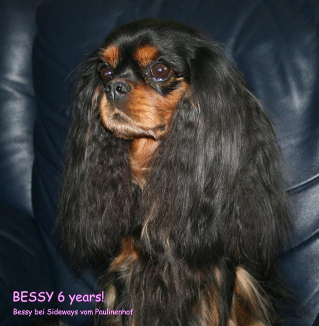 Bessy%206v%20240313min-normal.jpg
