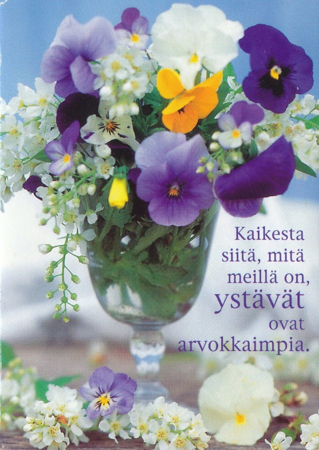Paletti_41451_J, kuva_Jorma _Jämsen (päiväys 20.2.2007) pk. A6.jpg