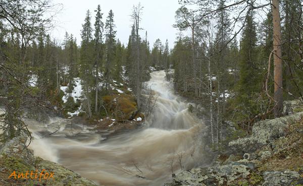 Ruuhijoki_Hangaskongas_leiska-normal.jpg