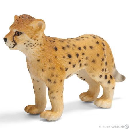 gepardi%20pentu%2014327-normal.jpg