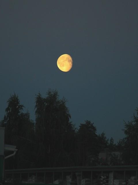 kuu-normal.jpg