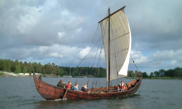 vikingship-sotka-normal.jpg