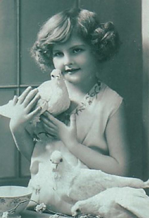 1900s_doves-1-normal.jpg