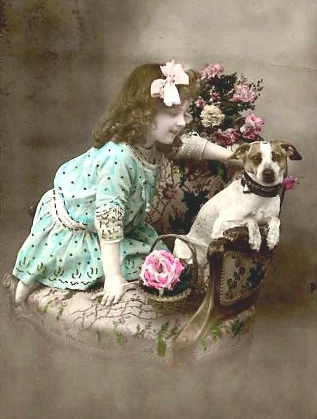 1910terrier-normal.jpg