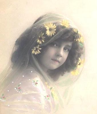 1910yellowdaisys-normal.jpg