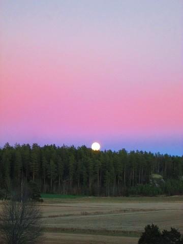 kuu1-normal.jpg