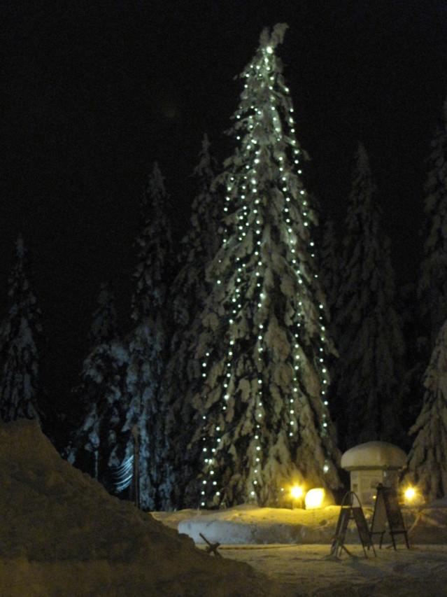 Kuopio28.-30.01.2011%20074-normal.jpg