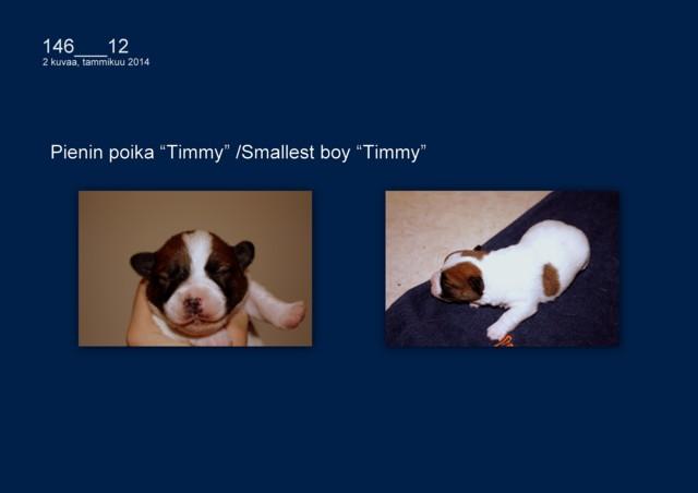 Timmy0401-normal.jpg