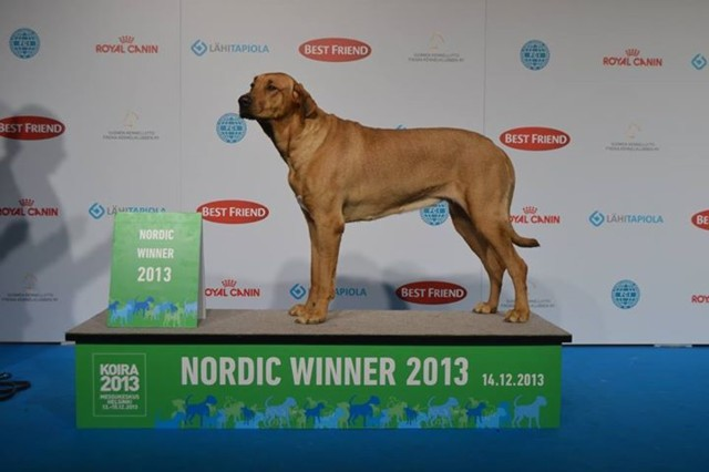Hilu%20Nordic%20Winner%2013-normal.jpg