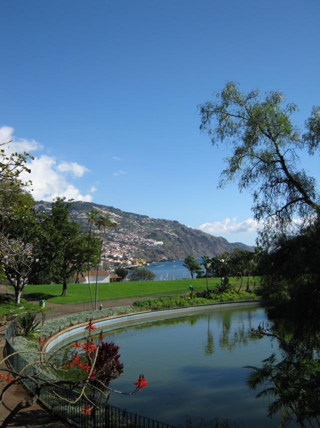 Madeira%20022-normal.jpg