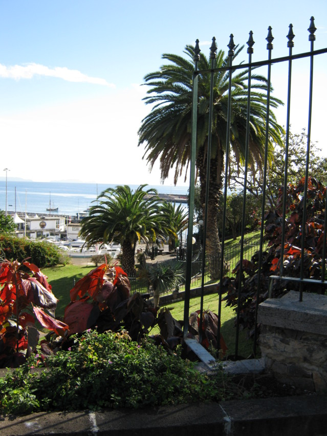Madeira%20055-normal.jpg