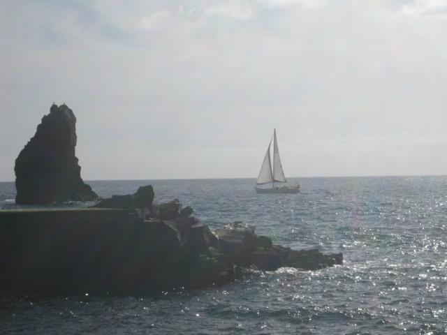 Madeira%20089-normal.jpg