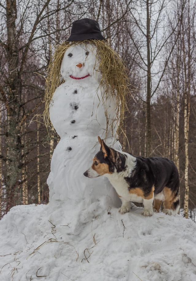 lumiukko-8-normal.jpg