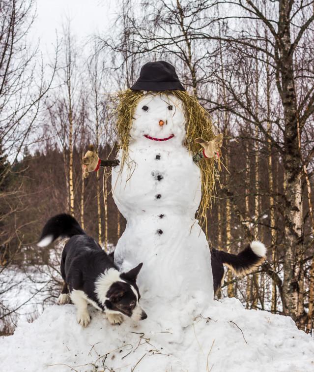 lumiukko-9-normal.jpg