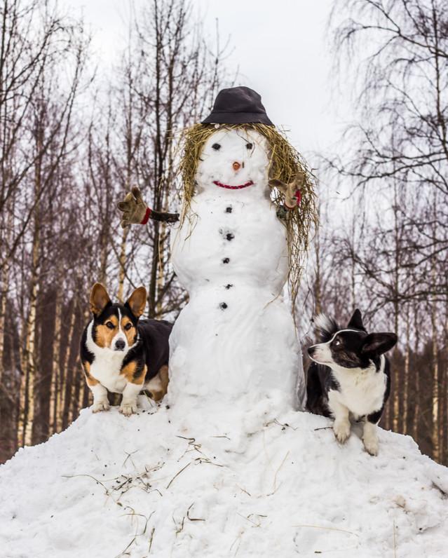 lumiukko-10-normal.jpg