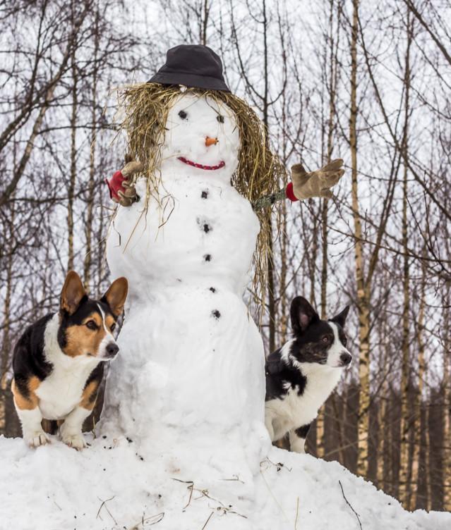 lumiukko-11-normal.jpg