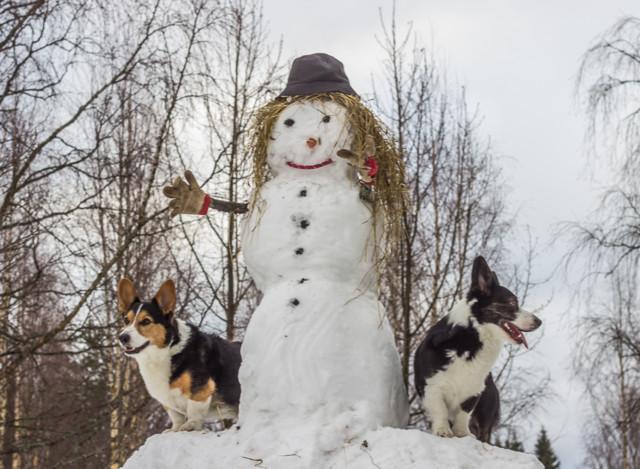 lumiukko-12-normal.jpg
