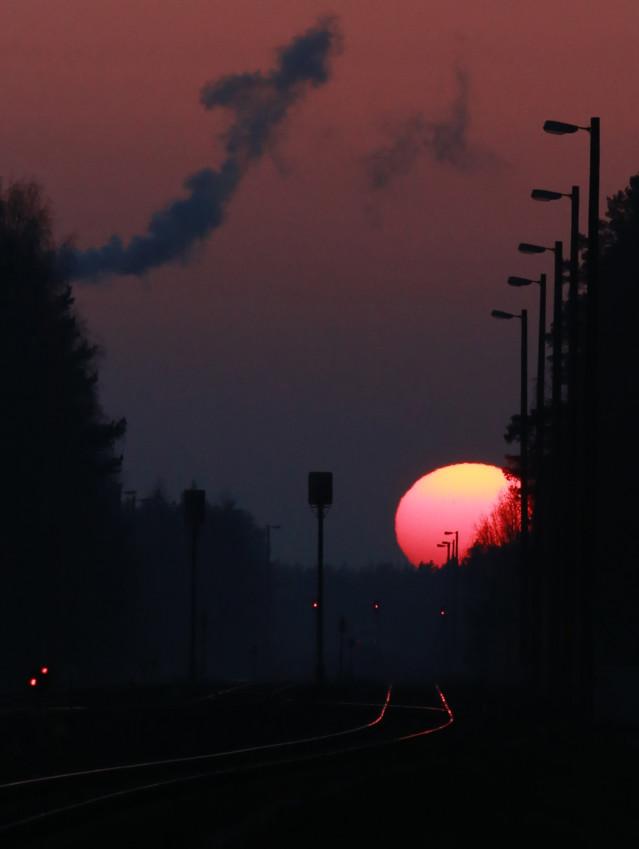 Auringonlasku%2Chirvi%C3%A4%2Coravia%20L