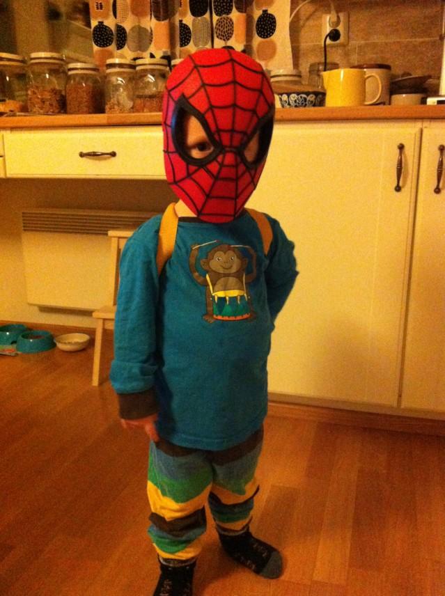 spider1-normal.jpg