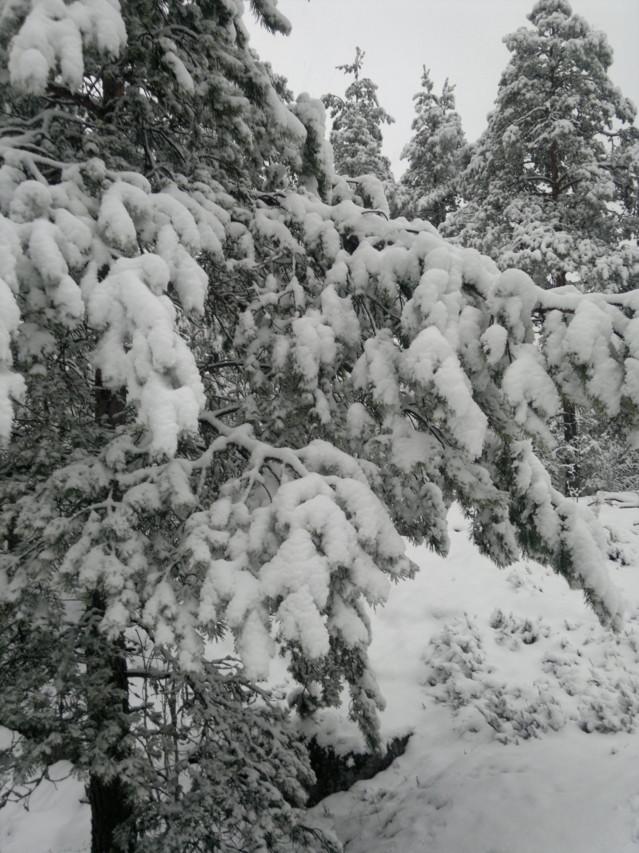2014-03-15-1293-normal.jpg