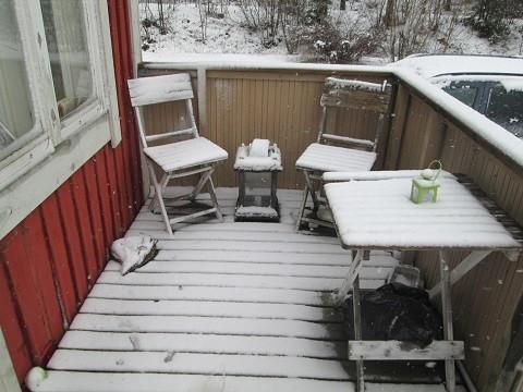 talvi1-normal.jpg