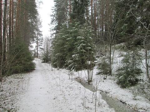 talvi2-normal.jpg