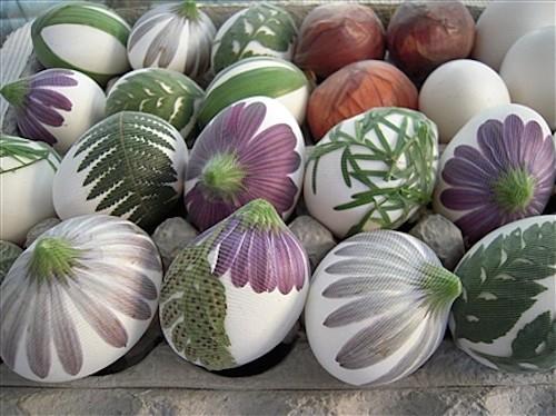 Eggs-ready-normal.jpg