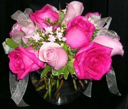 Vaaleanpunaiset-normal.jpg