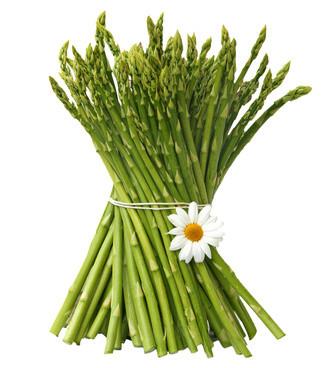 asparagus-1-normal.jpg