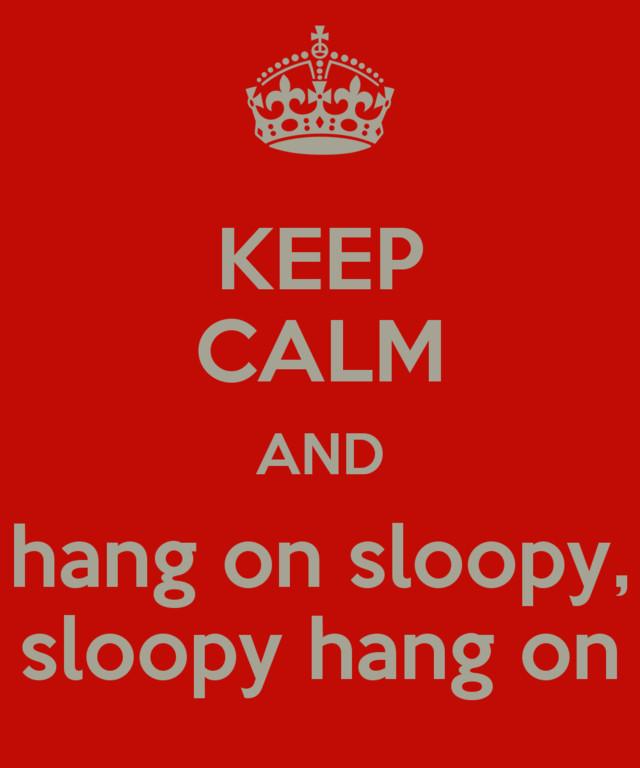 sloopy2-normal.jpg