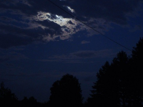 kuu4-normal.jpg