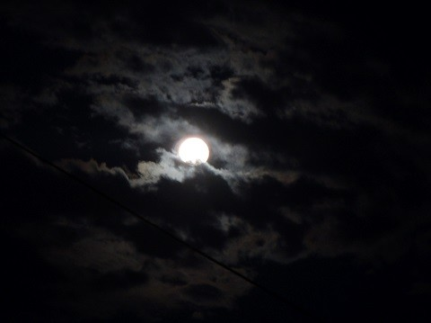kuu5-normal.jpg