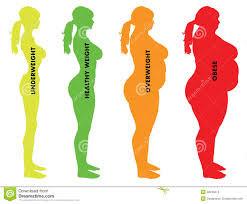 BMI2-normal.jpg