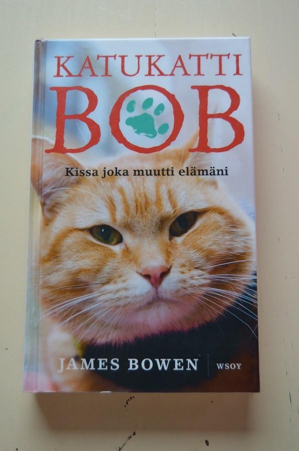 bob-normal.jpg