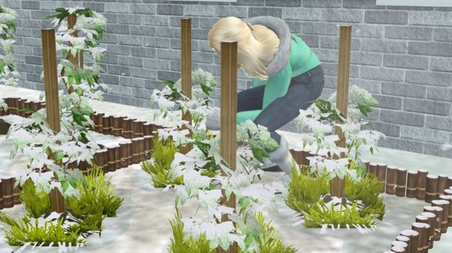 Sims2ep9%202014-09-02%2018-48-41-89-norm