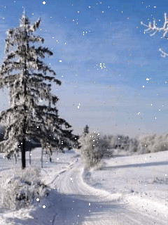 Talvimaisema2-normal.jpg
