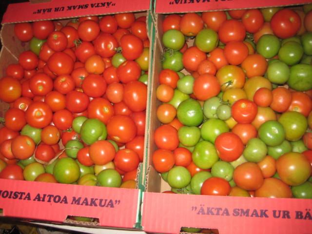 tomaatit 003.JPG