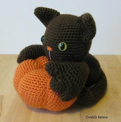 pumpkincat015.jpg
