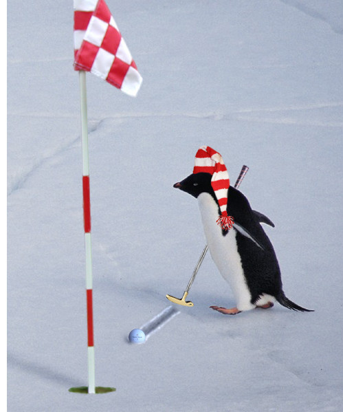 winter-golf_byron_kalies.jpg