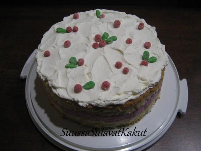 kakku.jpg?1421566255