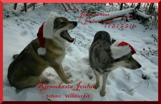 Joulu1Valmis.jpg