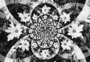 abstrakt.5.jpg?1560576587