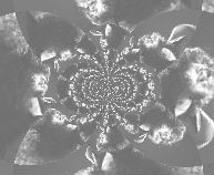 abstrakt.8.jpg?1420674082