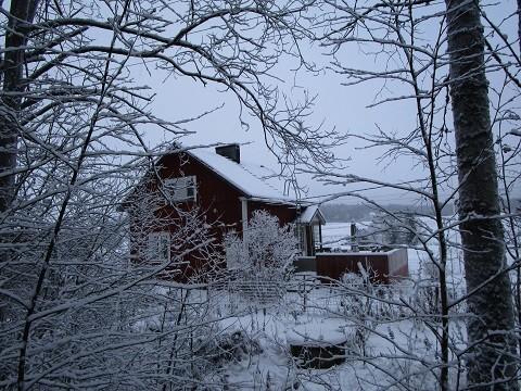 lumi1.jpg