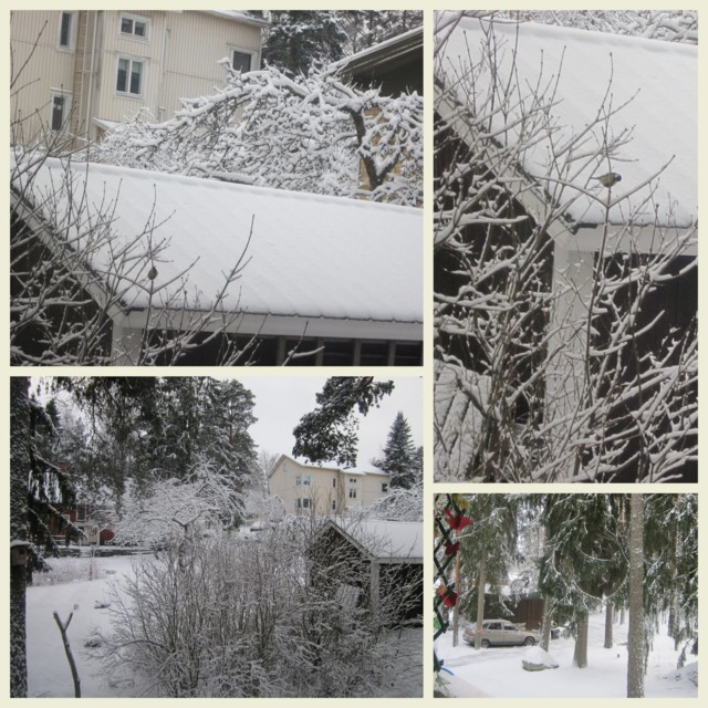 2015-01-04.jpg