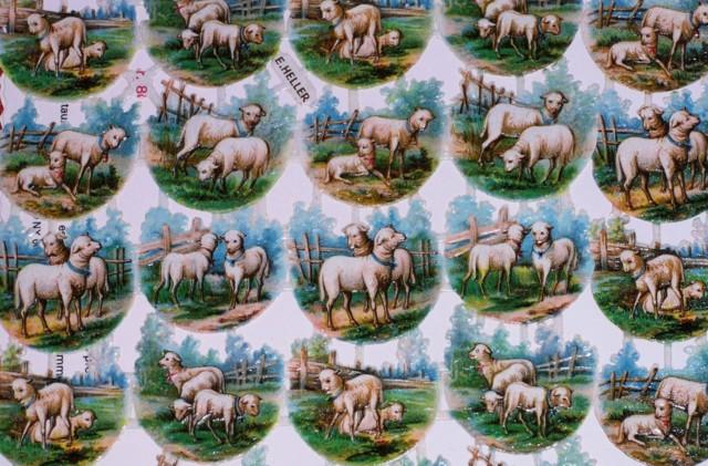 Lammaskiiltokuvat%20002.jpg