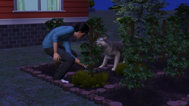Sims2ep9%202015-01-18%2001-39-58-78.jpg