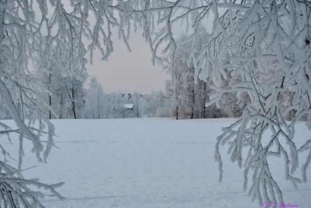 Talvinen_ikkuna_kent%C3%A4lleJka.jpg?142